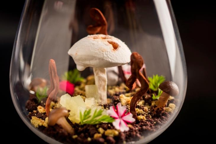 mushroom-terrarium-andre-steyn1