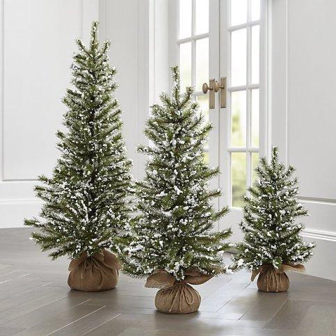 flocked-pine-trees