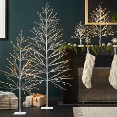led-birch-trees