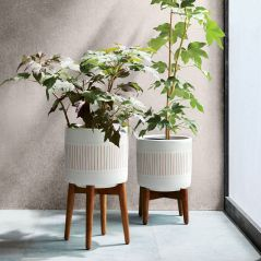 Mid Century Modern Planters by West Elm