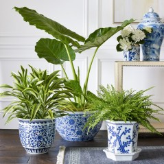 Ceramic Planters by Williams Sonoma