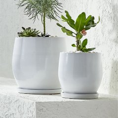 Campana Planters by Crate and Barrel