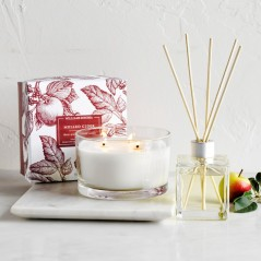 Mulled Cider Essential Oils Diffuser by Williams - Sonoma