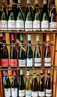 Wines at Bernkastel Kues, Germany. IMage Courtesy: Neha Wasnik