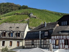 Weingut Dr H Thanisch vineyard seen from Bernkastel Kues town center. Image Courtesy: Neha Wasnik